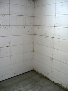 Стена из пенополистирольных блоков фото