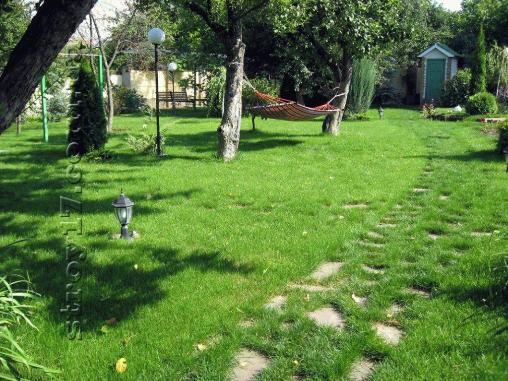 Благоустройство двора фото 5