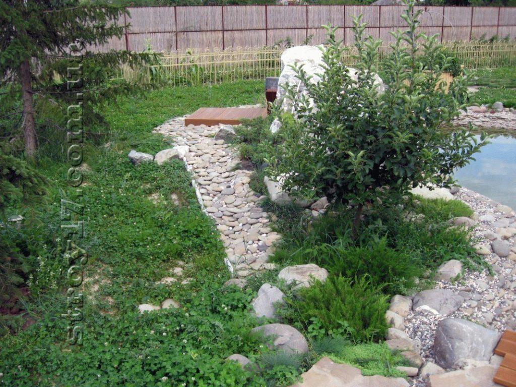 Озеленение частного двора фото 4