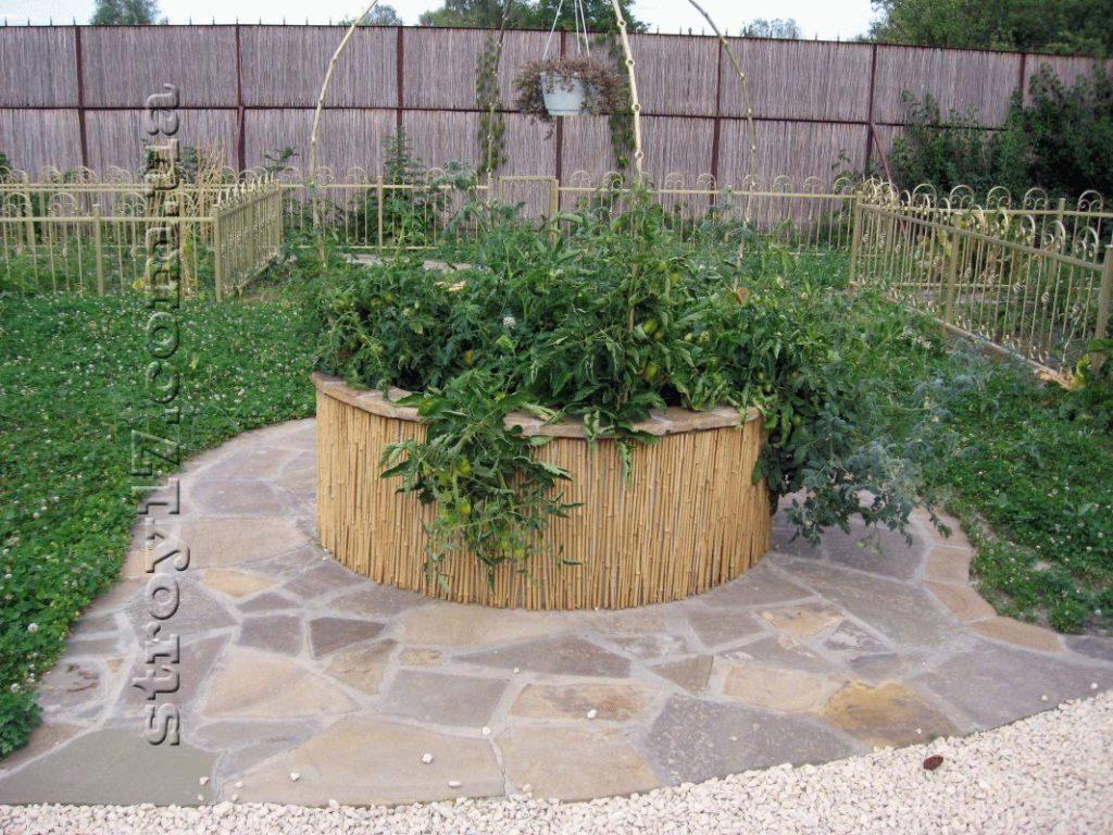 Округлая клумба для овощных культур фото