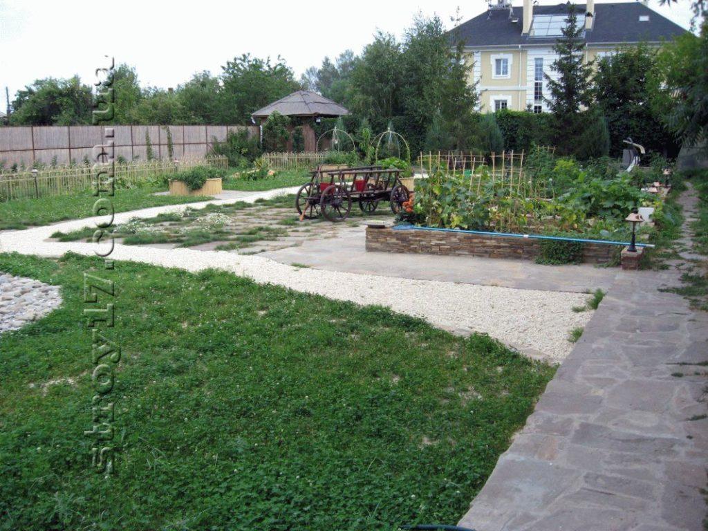 Озеленение частного двора фото 3