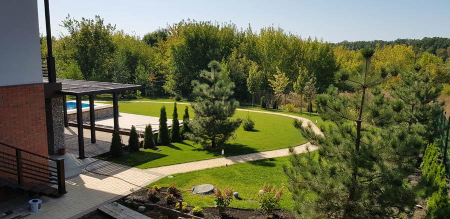 Озеленение двора частного дома фото 4