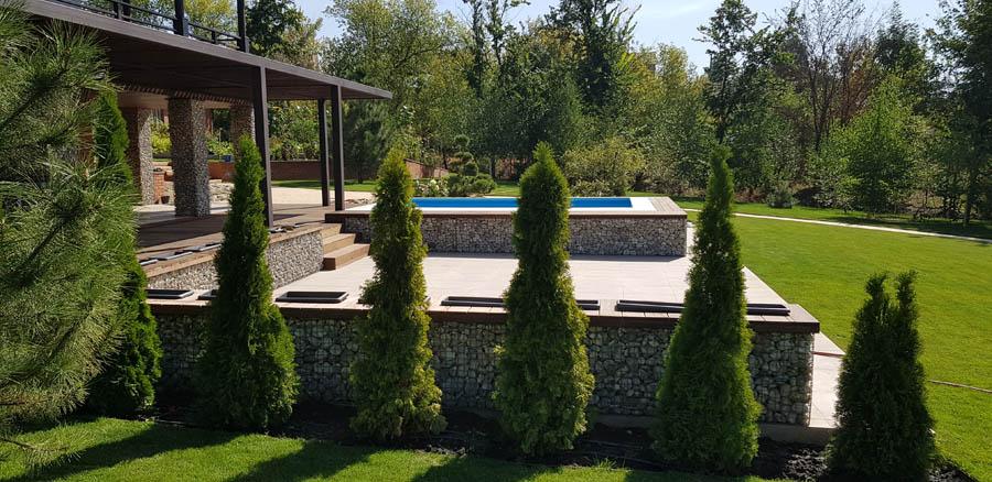 Озеленение участка частного дома фото 4